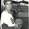 Sandy Koufax Photo Portrait by Gianfranco Weiss