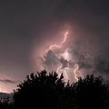 Sandy Pines Storm by Steven K Sembach
