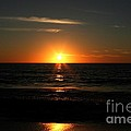 Sanibel At Sunset by The Art of Alice Terrill