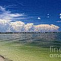 Sanibel Island by Richard Gripp