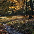 Sanilac Park by Kathy DesJardins