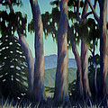 Santa Barbara Eucalyptus Grove by Teri Tompkins