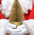 Santa Claus Holding Christmas Tree by Amanda Elwell