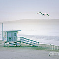 Santa Monica Beach by Wendy Gunderson