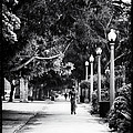 Santa Monica Jogging by John Rizzuto