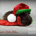 Santa's Little Helper by Renee Trenholm
