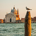 Santissimo Redentore At Sunset by Gurgen Bakhshetsyan