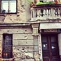Sarajevo Resilience  by Jennifer  MacNeill