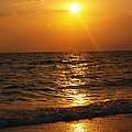 Sarasota Sunset Florida by Athala Carole Bruckner