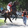 Saratoga Race Track Paddock by George Fredericks