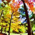 Saratoga Tree by Tina Baxter