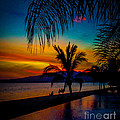 Saturated Mexican Sunset by Charlene Gauld