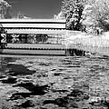 Saucks Bridge - Pond - Bw by Paul W Faust -  Impressions of Light