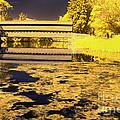 Saucks Bridge - Pond by Paul W Faust -  Impressions of Light