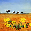 Saudi Arabian Desert by William Tremble