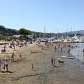 Sausalito Beach Sausalito California 5d22696 by Wingsdomain Art and Photography
