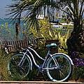 Sausalito Summer by Alicia Kent