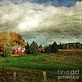 Sauvie Island Farm by Charlene Mitchell