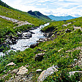Savage River From Savage River Trail In Denali Np-ak    by Ruth Hager