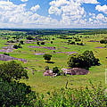 Savanna Landscape In Serengeti by Michal Bednarek