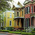 Savannah Architecture by Diana Powell