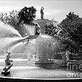 Savannah Fountain - Black And White by Carol Groenen