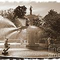 Savannah Fountain In Sepia by Carol Groenen