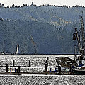 Savannah Jean On Liberty Bay by Greg Reed
