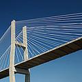 Savannah River Bridge Georgia Usa by Bob Pardue