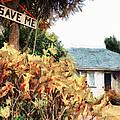 Save Me by Steve Taylor