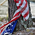 Save The Flag by Susan Leggett