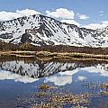 Sawatch Range In Spring by Sean McClay