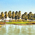 Sawgrass Tpc Golf Course 17th Hole by Bill Holkham