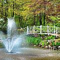 Sayen Garden Impression by Olivier Le Queinec
