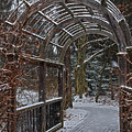 Garden Entrance During Winter Snow At Sayen Gardens by Beth Sawickie