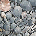 Scallop Shell And Black Stones by Mary Hubley