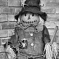 Scarecrow by Dan Sproul