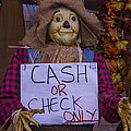 Scarecrow Holding Sign by Garry Gay