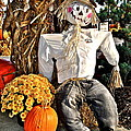 Scarecrow by Frozen in Time Fine Art Photography