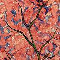 Scarlet Flowers by Vineeth Menon