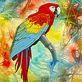 Scarlet Macaw In Abstract by Paul Krapf