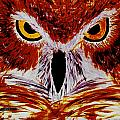 Scarlet Owl by David Cates