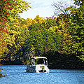 Scenic Autumn Viewing by Sandi OReilly