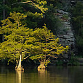 Scenic Beavers Bend by Kim Henderson
