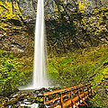 Scenic Elowah Falls In The Columbia River Gorge In Oregon by Jamie Pham