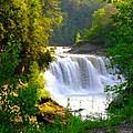Scenic Falls by Rhonda Barrett