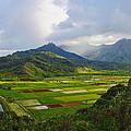 Scenic Kauai by Richard Cheski