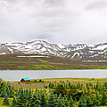 Scenic Landscape In Northern Iceland. by Jackie Follett