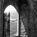 Scenic Portal 1 by Denise Mazzocco