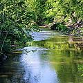 Scenic Sandusky River by Patti Smith